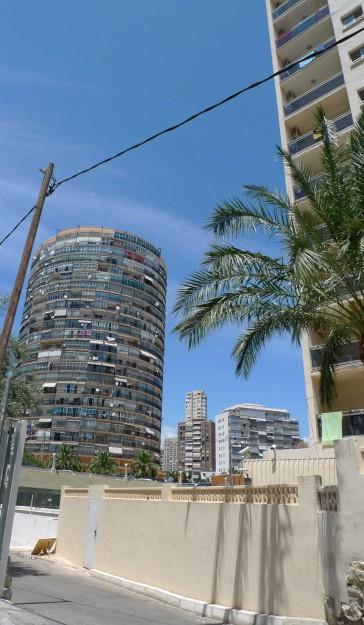 Palmenparadies Benidorm
