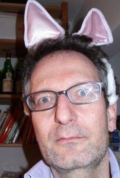 bunny foto