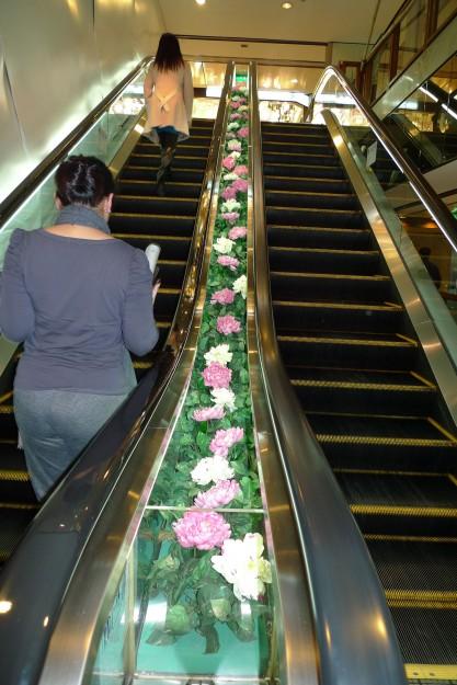 Auf der Rolltreppe: Steher und Geher